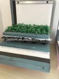 Système de toit de plantes vertes membrane imperméable en PVC avec certificat CE