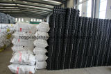 Griglia di plastica della ghiaia, griglia Geocell dell'HDPE del nero della strada privata della ghiaia