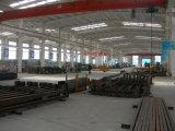 Gruppo di lavoro prefabbricato costato risparmio della struttura d'acciaio (KXD-SSW181)