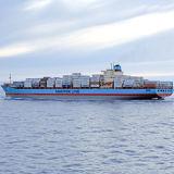 Internationale Vracht die de Dienst van China door:sturen aan Koper Slovenië