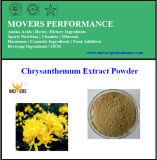 100%の自然な高品質の菊のエキスの粉