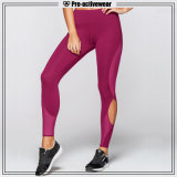 Wholesale Private Label Fitness Wear Ladies High Waist Yoga Leggings
