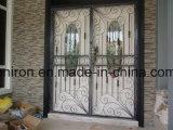 Portas do metal do ferro com vidro desobstruído