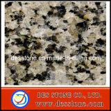 Piedra Natural amarillo Grainte baldosas pulidas (DES-GT041)