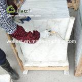 Tuile de marbre blanche de la Chine pour la villa/étage de Chambre/hôtel et le revêtement de mur