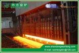 製鉄所の出力30t/H~220t/Hの歩くビーム暖房の炉