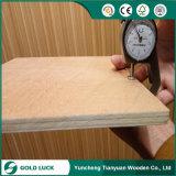 madera contrachapada comercial de 1220*2440m m Okoume/Bintangor para empaquetar