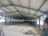 Bratrost-Haus, Geflügel bringen unter, das verschüttete Licht-Stahlkonstruktion-Huhn (XGZ-TX-0301)