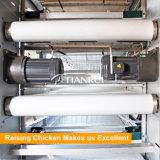 Automatische Mest die Systeem van de Apparatuur van de Kooi van het Gevogelte verwijderen