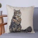 Het digitale Decoratieve Kussen/het Hoofdkussen van Af:drukken met het Patroon van Katten (mx-75)