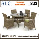 Table ronde de salle à manger en rotin et de chaises (SC-B6904)