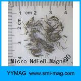 Ímã minúsculo ímã revestido Parylene do ímã da terra rara do mini micro