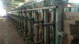 Glulam油圧出版物/ビーム油圧出版物