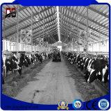 環境に優しい金属の建物の鋼鉄牛舎の農場