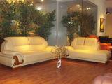 Sofa en cuir (A-829#)