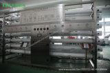 Système de Filtre de Machine/eau de Traitement Des Eaux de RO (10, 000L/H)