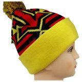 高い目に見える縞NTD1106で編まれるの編まれた帽子