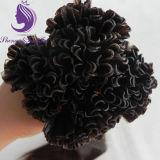 #4 estensione dei capelli del Virgin di punta della cheratina U