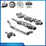 ISO9001 Delen van uitstekende kwaliteit van het Smeedstuk van het Staal van de Oppervlakte Galvaizing de Hete