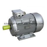 Электрические двигатели 0.75kw-280kw Y2 Series трехфазные Asynchronous