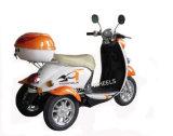 500W 48V invalidó la E-Vespa de 3 ruedas con la batería de plomo