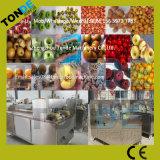 Macchina della puntinatura della palma del dattero secco fresco o di uso della fabbrica della frutta