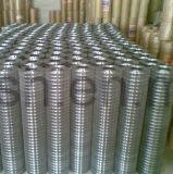 Galvano 1/2-Inch galvanisierte geschweißten Maschendraht-Zaun