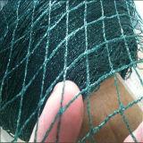 농업 정원 반대로 새 그물은, 내밀린 플라스틱 그물세공을 검게 한다