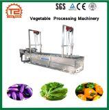 Anilha de fruta Máquinas para processamento de produtos hortícolas Automática