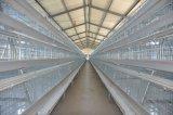 Gaiola da exploração agrícola de galinha da bateria da capacidade elevada do equipamento das aves domésticas