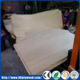 白い偵察の合板のためのポプラによって設計される表面ベニヤ
