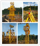 25ton Qtz160-7055 Spitzeninstallationssatz-Turmkran-Aufbau-Turmkrane