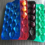 Exibir nenhuma poluição Bandeja de frutas de plástico PP
