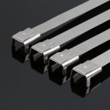 Polyester Coating Stainless Steel Wire Ties with Ear Buckles