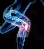 건강과 스포츠를 위한 아마존 무릎 부목 이득