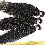 Populorのベストセラーの巻き毛の波のブラジルのバージンの人間の毛髪