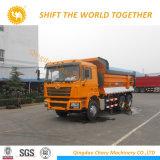 Shacman 290HP 6X4のダンプトラックのダンプカートラック