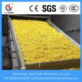 Plantaardige Continute SUS 304 en Hete het Aan de lucht drogen van het Type van Riem van het Netwerk van het Fruit Multilayer Machine