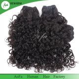 Lockiges Menschenhaar kann einfach sein färbte kein verschüttendes brasilianisches Jungfrau-Haar