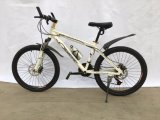 Boas Vendas Mountain Bike MTB062