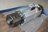 asse di rotazione di Atc raffreddato aria 9kw per il robot che intaglia legno