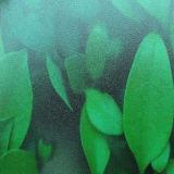 Polycarbonaat Berijpt Blad 412mm