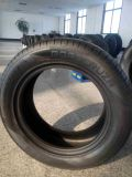 Roadcruza Car Tyre, China fire of animals Supplier, PCR Factory