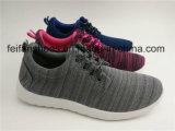 女性の注入のズック靴の偶然靴のスポーツの靴