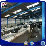Edificios de acero prefabricados de la instalación fácil nuevos para la casa de la granja de ganado