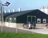 환경 관리 빛 강철 구조물은 전 가금 집 /Prefab 닭 농가를 건축했다