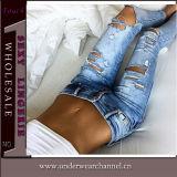 Le nuove donne del commercio all'ingrosso di stile distrugg gli alti jeans del denim della vita (TXXL287)