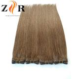 Cor marrom-Naturais Cabelos Europeu Remy Hair Cabelo humano da trama