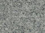 De grijze Plak van de Tegel van de Steen van het Graniet van de Sesam van de Kleur G633 Witte