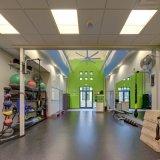 体操の化粧室のためのResilentのスポーツのビニールのフロアーリング